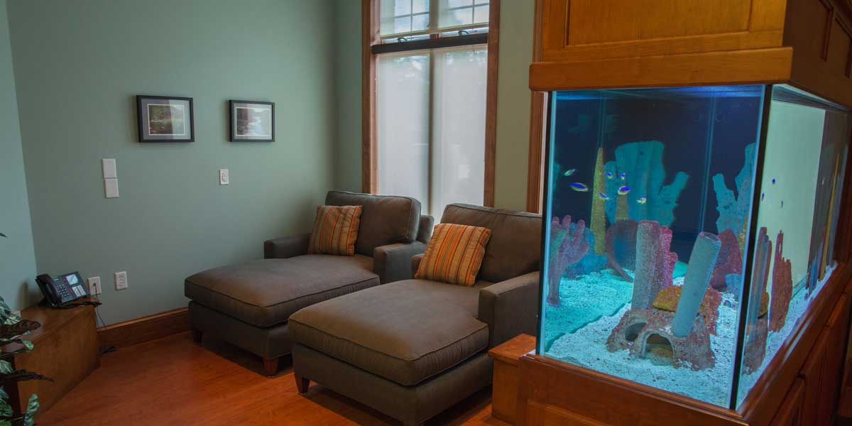 DR9A0692-Aquarium